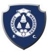 Belgrave Wanderers FC